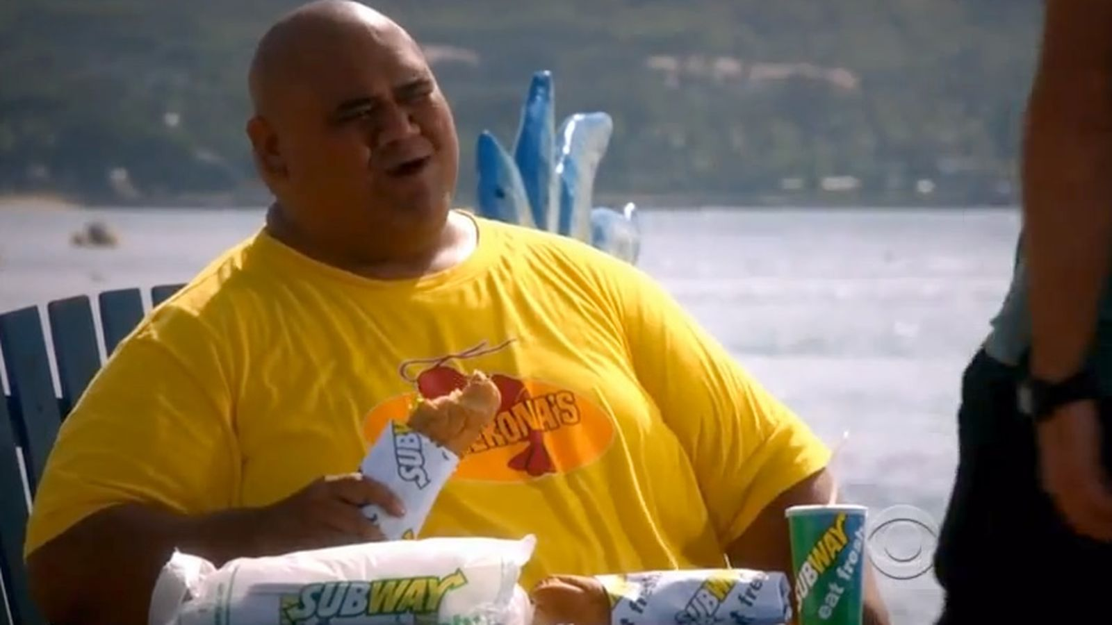 subway-hawaii-five-o-0